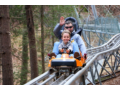 Georgia%20Mountain%20Coaster%20%2D%20Fast%20and%20Fun